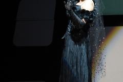 Schwarze Witwe Klein
